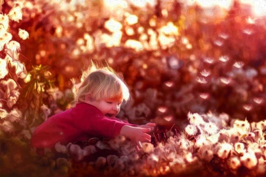 Что такое счастье простыми словами? Это то, что ищет каждый, но не каждый находит.